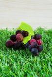 l'uva è fatta da plastica e da erba Fotografia Stock Libera da Diritti