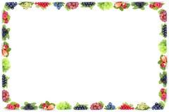 L'uva del ribes dei mirtilli delle fragole delle bacche incornicia il organi Immagine Stock