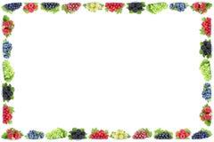 L'uva del ribes dei mirtilli delle fragole delle bacche incornicia la bacca Immagine Stock Libera da Diritti