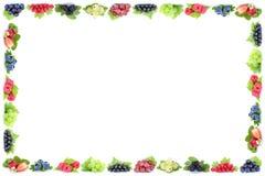 L'uva del ribes delle fragole delle bacche incornicia i copys delle bacche Immagine Stock Libera da Diritti