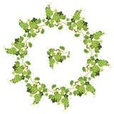 L'uva rotonda incornicia e ripetuto l'elemento per le etichette o il menu del vino Fotografia Stock Libera da Diritti