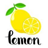 L is voor citroen vector illustratie