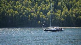 L'yacht della navigazione divide con confidenza la superficie scintillant del lago stock footage