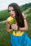 L young girl with long hair in field Stock Photography