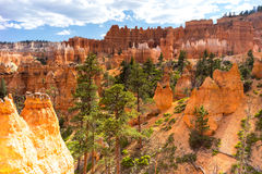 Laço Bryce Canyon National Park Utah EUA do Navajo Imagens de Stock Royalty Free