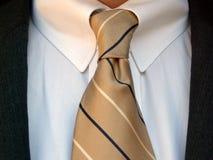 laço da camisa do terno Foto de Stock Royalty Free