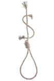 Laço da corda Fotografia de Stock