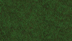 Laço do campo de grama ilustração royalty free