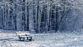 Laço sem emenda - nevando em um banco em uma floresta no inverno, vídeo HD video estoque