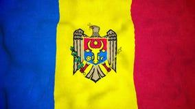 Laço video sem emenda da bandeira moldava vídeos de arquivo