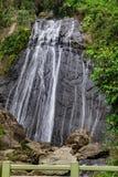 La古柯瀑布,El Yunque 库存照片