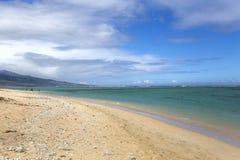 La盐海滩, La雷乌尼翁冰岛,法国 库存照片