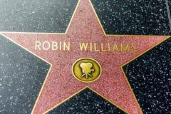 LA,美国- 2018年10月30日:在好莱坞光荣榜的已故的罗宾・威廉斯星 免版税图库摄影