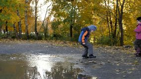 La época del año, otoño Niños que juegan en la naturaleza almacen de metraje de vídeo