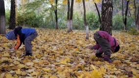 La época del año, otoño Niños que juegan en la naturaleza metrajes