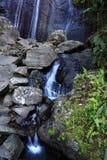la коки cascada Стоковые Фотографии RF