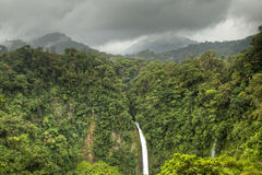 La福尔图纳瀑布在阿雷纳尔国家公园,哥斯达黎加 库存照片