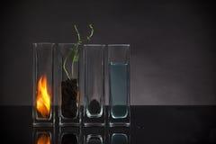 La aún-vida de cuatro elementos Imagen de archivo