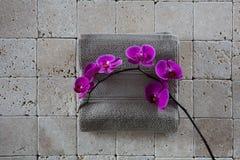 La aún-vida de la belleza del zen con las orquídeas rosadas fijó en la toalla gris Fotos de archivo