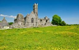 La abadía antigua irlandesa escénica de la iglesia arruina paisaje Imagen de archivo libre de regalías