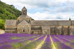 La abadía de Senanque y de la floración rema las flores de la lavanda Foto de archivo