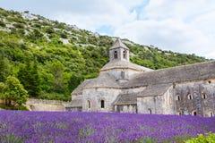 La abadía de Senanque y de la floración rema las flores de la lavanda Fotografía de archivo