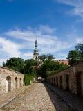 La abadía vieja de Henrykow Foto de archivo libre de regalías