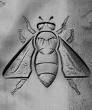 La abeja Fotos de archivo libres de regalías