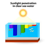 La absorción de la luz del sol ocurre en agua clara Fotos de archivo