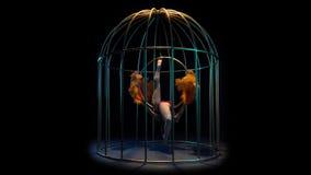 La actriz gira en el aro del aire en una jaula Fondo negro metrajes