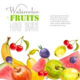La acuarela da fruto fondo Ilustración drenada mano del vector Foto de archivo