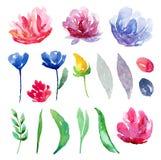 La acuarela florece el clipart del vector Clip art floral abstracto Fotos de archivo libres de regalías