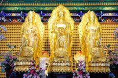 La adoración del ídolo chino del buddhism Imagen de archivo libre de regalías