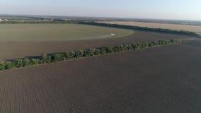 La agricultura, avión vuela sobre campo con trigo y el salpicar contra parásito en vista los insecticidas desde arriba a almacen de video