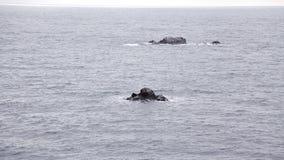 La agua de mar elimina las piedras, rocas Océano y las rocas Las rocas se cubren con el musgo y se lavan con la agua de mar almacen de video