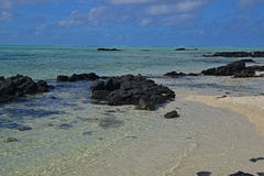 La agua de mar transparente clara limpia de Ile Cerfs aux. Mauricio con las rocas negras emergidas y la playa arenosa visible Fotos de archivo libres de regalías
