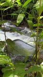 La agua que nos cubre Stock Photos