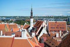 La aguja de la iglesia vieja y los tejados del viejo día soleado de Tallinn Fotografía de archivo libre de regalías