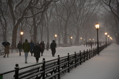 La alameda, Central Park fotografía de archivo libre de regalías
