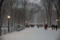 La alameda en Central Park Imagen de archivo libre de regalías