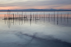 La Albufera, Valencia, Spain. Sunset in the natural park of the Lagoon, Valencia, Spain Royalty Free Stock Photos