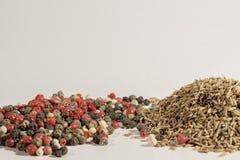 La alcaravea, comino, pimienta negra, pimienta inglesa, paprika, especias utilizó por todo el mundo Fotografía de archivo libre de regalías