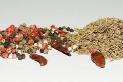 La alcaravea, comino, pimienta negra, pimienta inglesa, paprika, especias utilizó por todo el mundo Foto de archivo