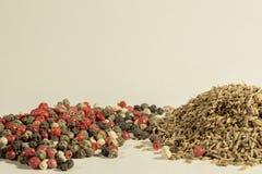 La alcaravea, comino, pimienta negra, pimienta inglesa, paprika, especias utilizó por todo el mundo Foto de archivo libre de regalías