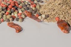 La alcaravea, comino, pimienta negra, pimienta inglesa, paprika, especias utilizó por todo el mundo Imagen de archivo libre de regalías