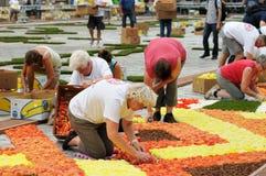 La alfombra 2012 de la flor Imagen de archivo libre de regalías