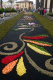 La alfombra de flores La Orotava Tenerife Imágenes de archivo libres de regalías