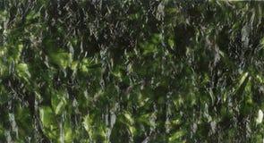 La alga marina de la hoja de Nori secó imagen de la textura del fondo de la alga marina Fotografía de archivo libre de regalías
