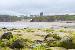 La alga marina del castillo de Ballybunion cubrió rocas Fotografía de archivo libre de regalías