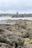 La alga marina del castillo de Ballybunion cubrió la opinión de las rocas Fotografía de archivo